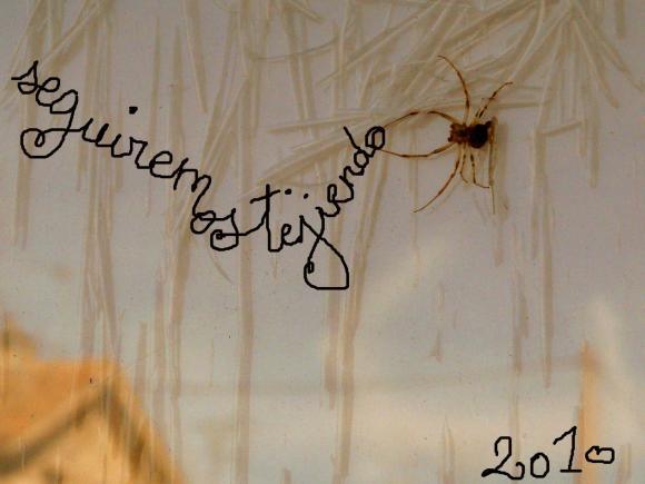 http://poetiquedelepluchure.cowblog.fr/images/arana2010psd.jpg