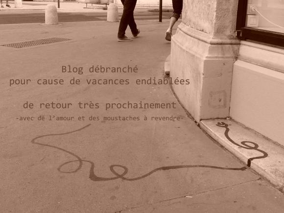 http://poetiquedelepluchure.cowblog.fr/images/blogdebranche.jpg